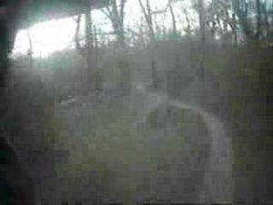 TMX Park, Cross Country Trails, Part 1 (Lyndon Poskitt)
